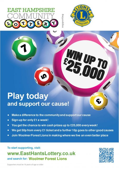 play-east-hampshire-community-lottery - image-1